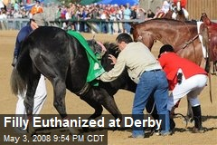 Filly Euthanized at Derby