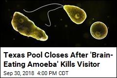 Wave Pool Shuttered After 'Brain-Eating Amoeba' Death