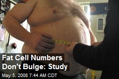 Fat Cell Numbers Don't Bulge: Study