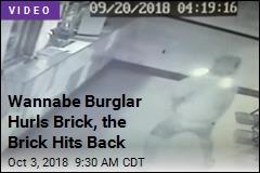 Wannabe Burglar Hurls Brick, the Brick Hits Back