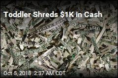 Toddler Shreds $1K in Cash
