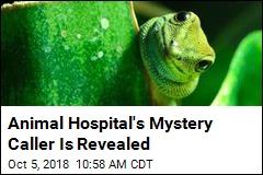 Animal Hospital's Mystery Caller Is Revealed