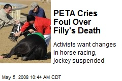 PETA Cries Foul Over Filly's Death