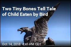 Two Tiny Bones Tell Tale of Child Eaten by Bird