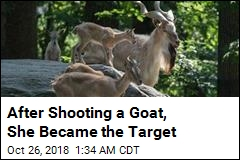 After Shooting a Goat, She Became the Target