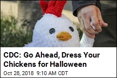 Never Fear, CDC Says Chickens Can Dress Up for Halloween