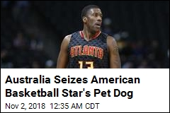 Australia Seizes American Basketball Star's Pet Dog