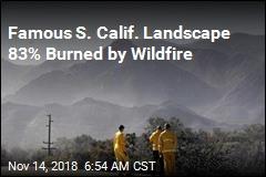 83% of Beloved Parkland Destroyed in Calif. Fire