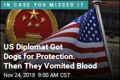 US Diplomat Got Dogs for Protection. Then They Vomited Blood