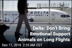 Delta: No More Emotional Support Animals on Long Flights