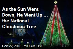 As the Sun Went Down, He Went Up ... the National Christmas Tree