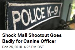 'He's a Good Boy': K-9 Mourned After Mall Shootout