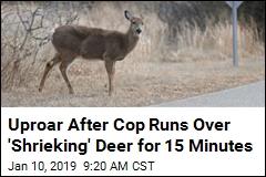 Uproar After Cop Runs Over 'Shrieking' Deer for 15 Minutes