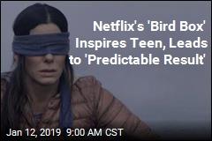 Teen Emulating Netflix's Bird Box Crashes Car