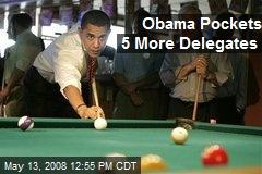Obama Pockets 5 More Delegates