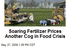 Soaring Fertilizer Prices Another Cog in Food Crisis