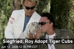 Siegfried, Roy Adopt Tiger Cubs