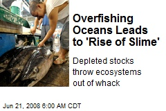 Overfishing Oceans Leads to 'Rise of Slime'