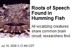 Roots of Speech Found in Humming Fish
