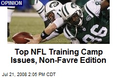 Top NFL Training Camp Issues, Non-Favre Edition