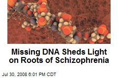 Missing DNA Sheds Light on Roots of Schizophrenia