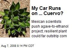 My Car Runs on ... Cuervo?