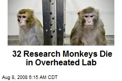 32 Research Monkeys Die in Overheated Lab