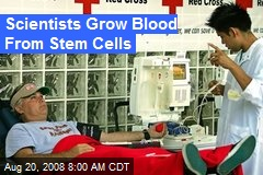 Scientists Grow Blood From Stem Cells