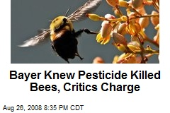 Bayer Knew Pesticide Killed Bees, Critics Charge