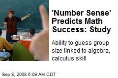 'Number Sense' Predicts Math Success: Study