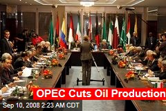 OPEC Cuts Oil Production
