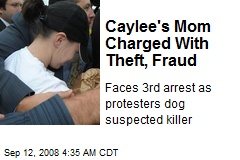 Caylee's Mom Charged With Theft, Fraud