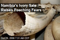 Namibia's Ivory Sale Raises Poaching Fears
