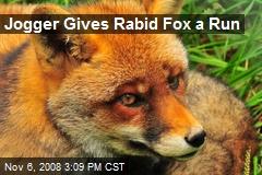 Jogger Gives Rabid Fox a Run