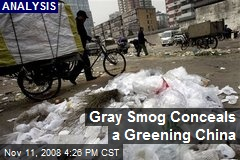 Gray Smog Conceals a Greening China