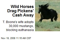 Wild Horses Drag Pickens' Cash Away
