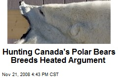 Hunting Canada's Polar Bears Breeds Heated Argument