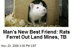 Man's New Best Friend: Rats Ferret Out Land Mines, TB