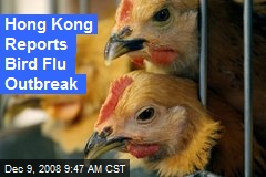 Hong Kong Reports Bird Flu Outbreak