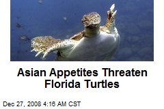 Asian Appetites Threaten Florida Turtles