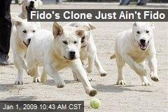 Fido's Clone Just Ain't Fido