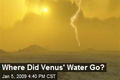 Where Did Venus' Water Go?
