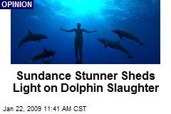 Sundance Stunner Sheds Light on Dolphin Slaughter