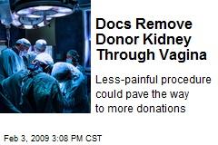 Docs Remove Donor Kidney Through Vagina
