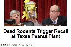 Dead Rodents Trigger Recall at Texas Peanut Plant