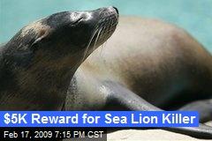 $5K Reward for Sea Lion Killer