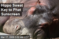 Hippo Sweat Key to Phat Sunscreen