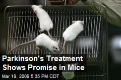 Parkinson's Treatment Shows Promise in Mice
