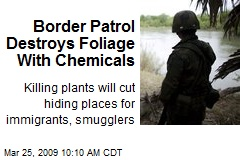 Border Patrol Destroys Foliage With Chemicals