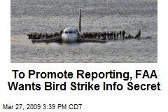 To Promote Reporting, FAA Wants Bird Strike Info Secret